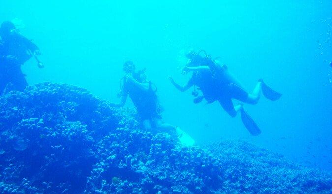 Comment apprendre à plonger aux Fidji ?